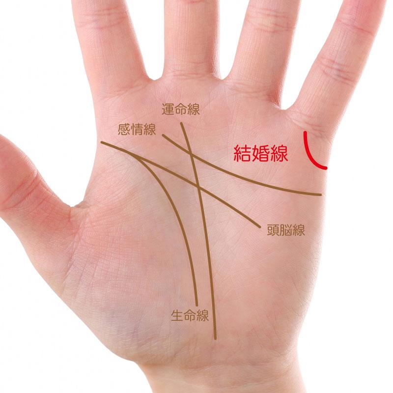 小指の付け根に伸びる結婚線